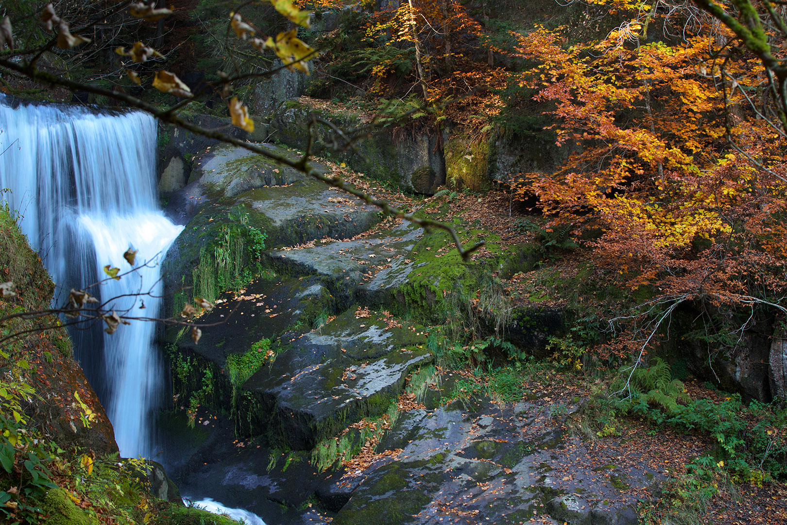 Triberg Waterfall Black Forrest Germany